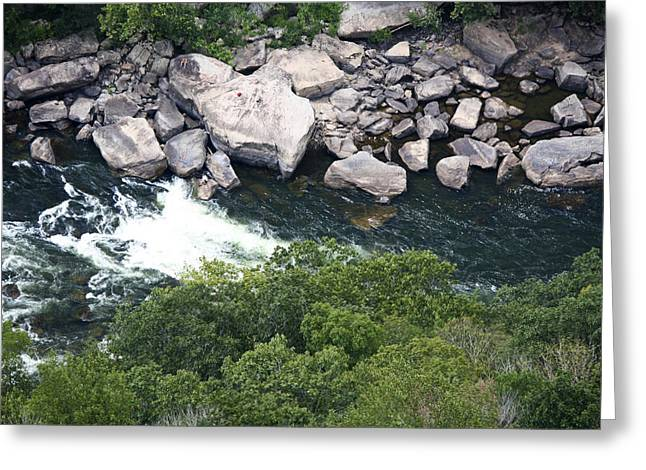 Fayetteville Greeting Cards - New River Rock Watching Greeting Card by Teresa Mucha