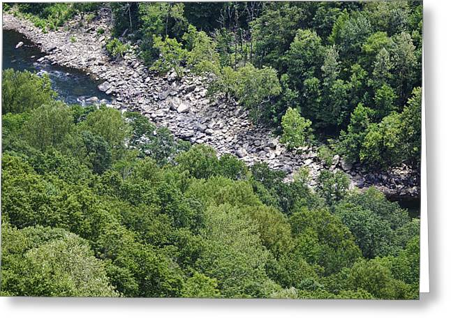 Fayetteville Greeting Cards - New River  Greeting Card by Teresa Mucha