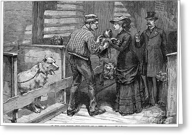Humane Society Greeting Cards - New York: Dog Pound, 1883 Greeting Card by Granger