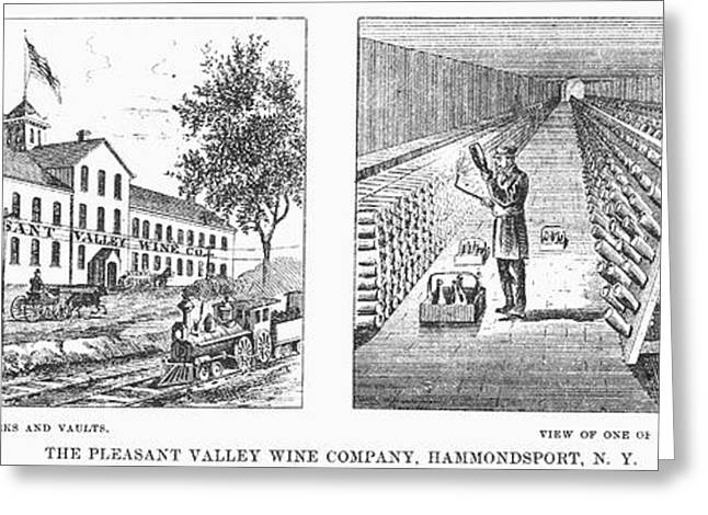 Wine Vault Greeting Cards - New York: Winery, 1878 Greeting Card by Granger