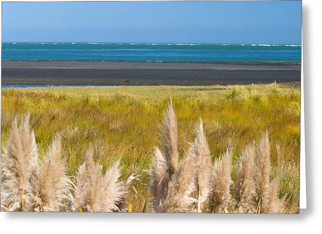 Reserve Greeting Cards - New Zealand Greeting Card by Tomas del Amo - Printscapes