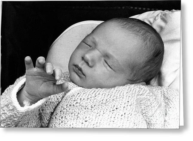 Sami Sarkis Greeting Cards - Newborn baby girl sleeping in her stroller Greeting Card by Sami Sarkis
