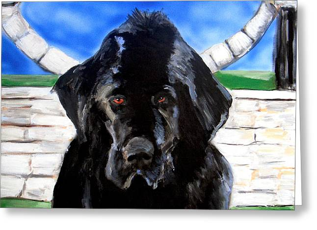 Newfoundland Greeting Card by Jon Baldwin  Art