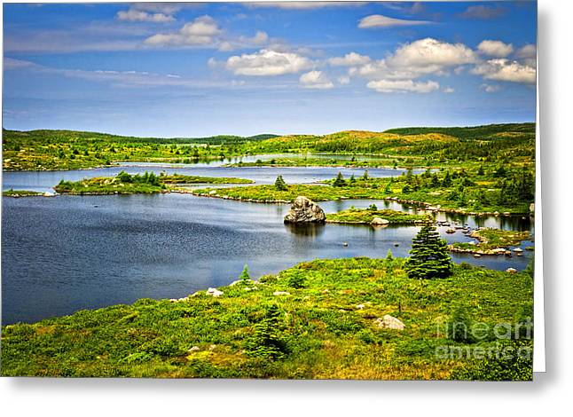 Peaceful Scenery Greeting Cards - Newfoundland landscape Greeting Card by Elena Elisseeva