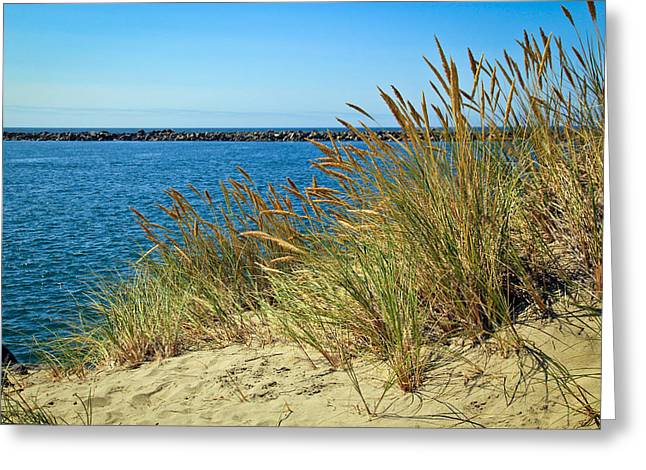 Surfer Art Greeting Cards - Newport Bay in Oregon Greeting Card by Athena Mckinzie