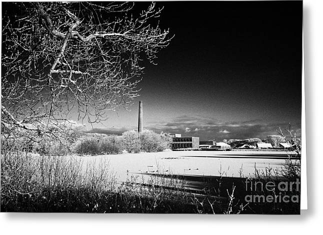 Outside Ice Greeting Cards - Newtownabbey borough council hq mossley mill and mossley lake frozen on a cold snowy winters day Greeting Card by Joe Fox