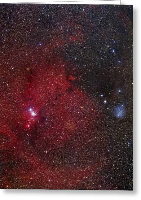 Monoceros Greeting Cards - Ngc 2264 Nebulae Greeting Card by Mpia-hd, Birkle, Slawik