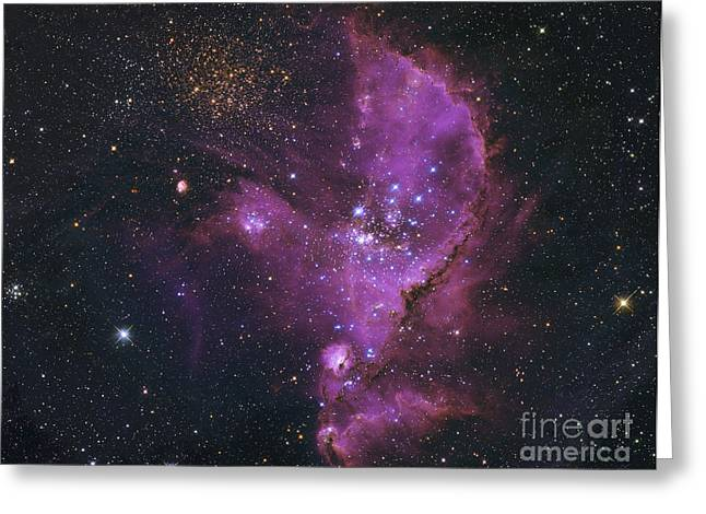 Star Formation Greeting Cards - Ngc 346, Open Cluster And Nebula Greeting Card by Robert Gendler