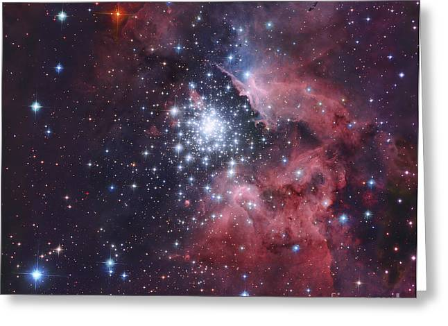 Star Formation Greeting Cards - Ngc 3603, A Giant H-ii Region Greeting Card by Robert Gendler