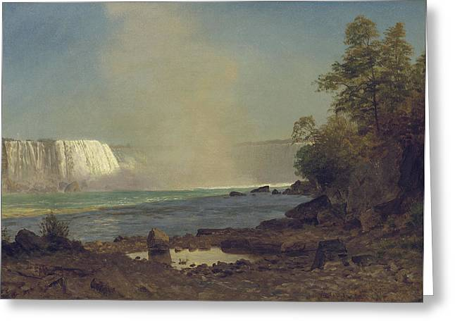 Waterfall Greeting Cards - Niagara Falls Greeting Card by Albert Bierstadt