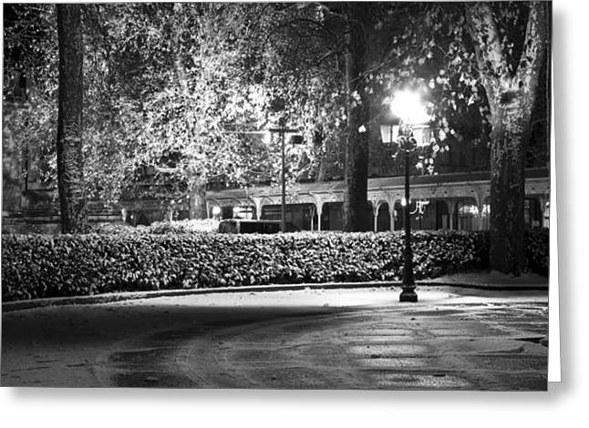 Vichy Greeting Cards - Night light in the park Greeting Card by Alexander Davydov