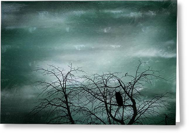 Bird On Tree Greeting Cards - Night Owl Greeting Card by Nomad Art And  Design