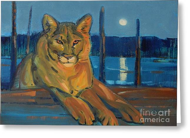 Cougar Greeting Cards - Night Watch Greeting Card by Donald Maier