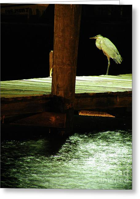 Humorous Greeting Cards Greeting Cards - Night Watch Greeting Card by Joe Jake Pratt