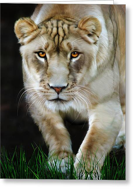 Lioness Greeting Cards - Nikita Greeting Card by Big Cat Rescue