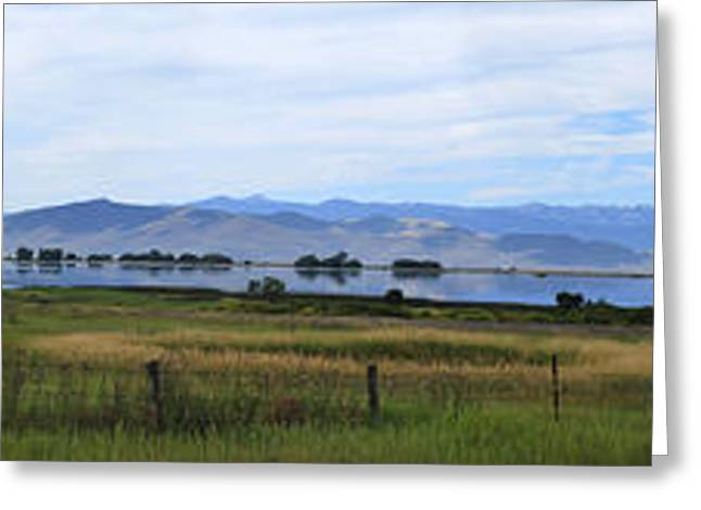 Water Fowl Greeting Cards - Ninepipes National Wildlife Refuge Greeting Card by Robert Gallup