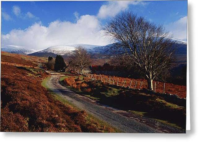 Country Dirt Roads Greeting Cards - Nire Valley Drive, County Waterford Greeting Card by Richard Cummins