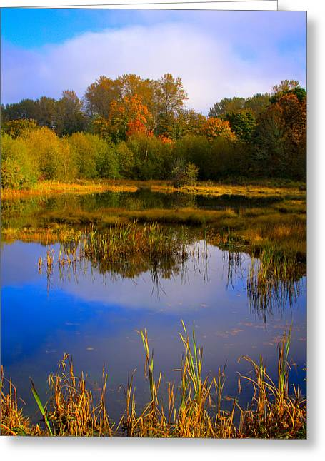 Watershed Greeting Cards - Nisqually Wildlife Refuge P10 Greeting Card by David Patterson
