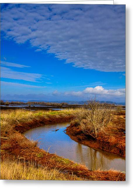 Wildlife Refuge. Greeting Cards - Nisqually Wildlife Refuge P33 Greeting Card by David Patterson