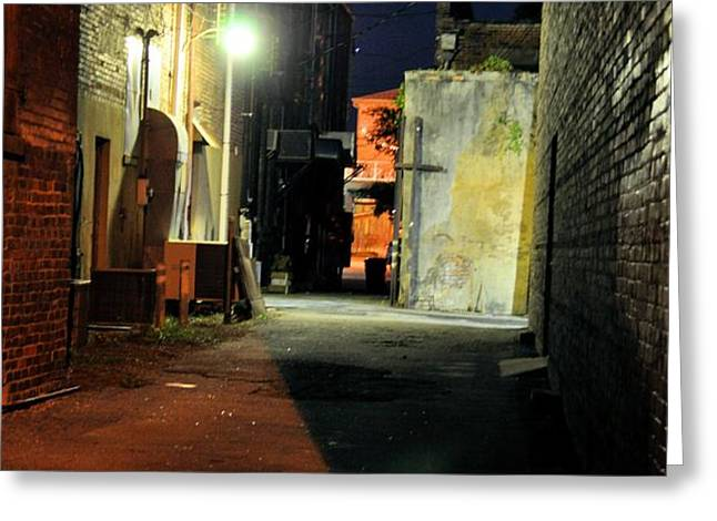 No Alley Cats Tonight Greeting Card by Jan Amiss Photography