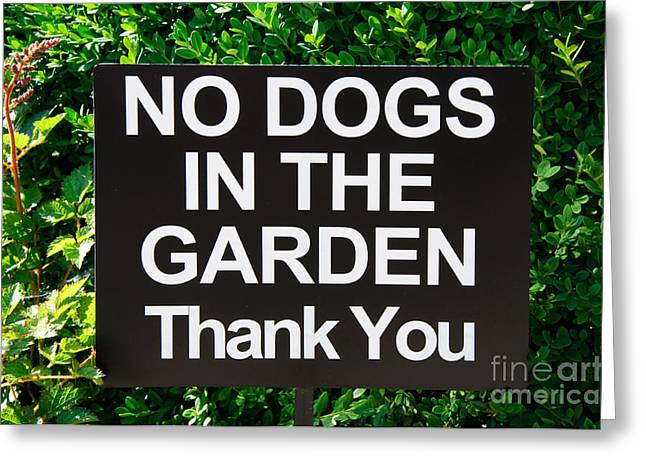 The Restricted Greeting Cards - No Dogs In The Garden Thank You Greeting Card by Andee Design