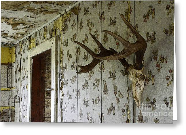 Abandoned Houses Greeting Cards - No One Lives Here Greeting Card by Bob Christopher