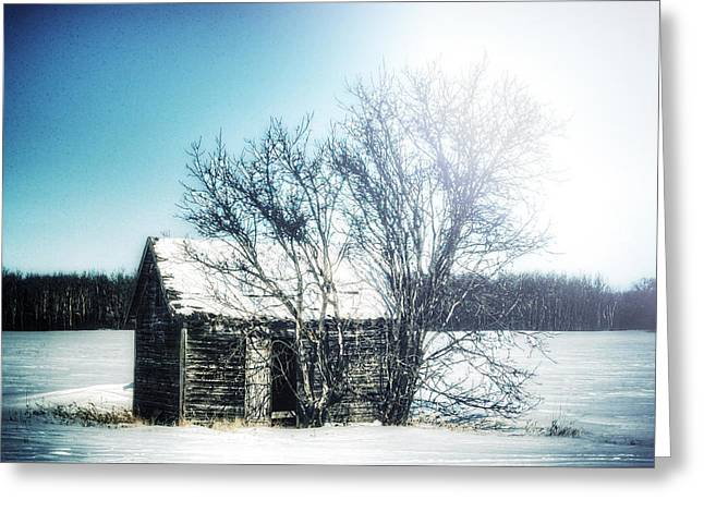 Painted Wood Greeting Cards - No Place... Greeting Card by Stuart Deacon