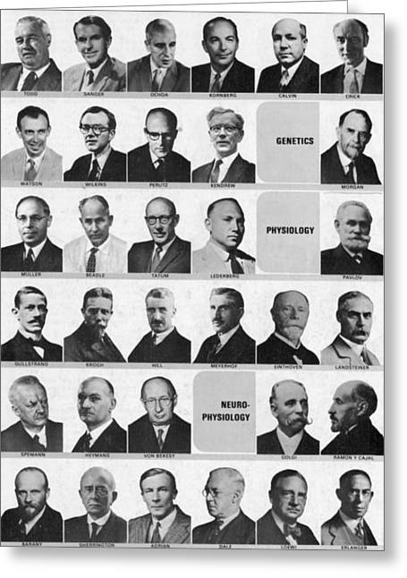 Nobel Prize Greeting Cards - Nobel Prize Winners Greeting Card by Science Source