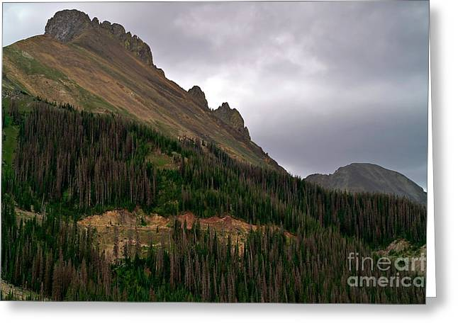 Nokhu Crags Colorado Greeting Card by Michael Kirsh