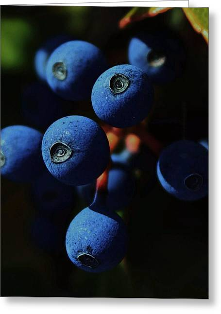 Berry Digital Art Greeting Cards - Noon Greeting Card by Amy Neal