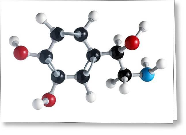 Noradrenaline Greeting Cards - Noradrenaline Molecule Greeting Card by