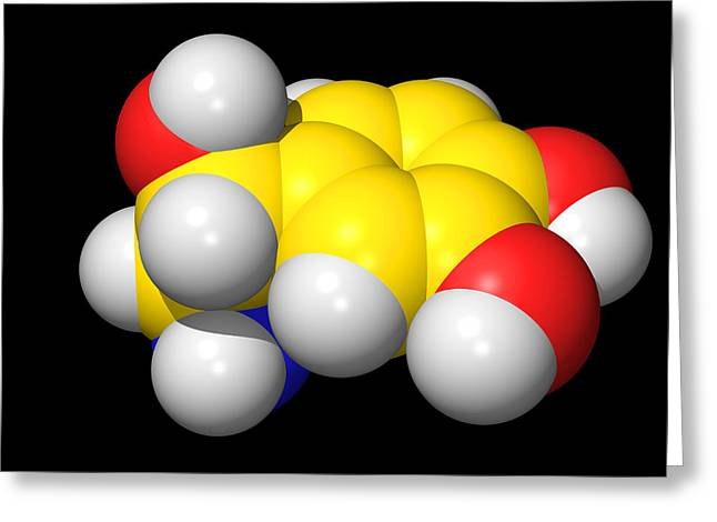 Bonding Greeting Cards - Noradrenaline Molecule Greeting Card by Dr Tim Evans