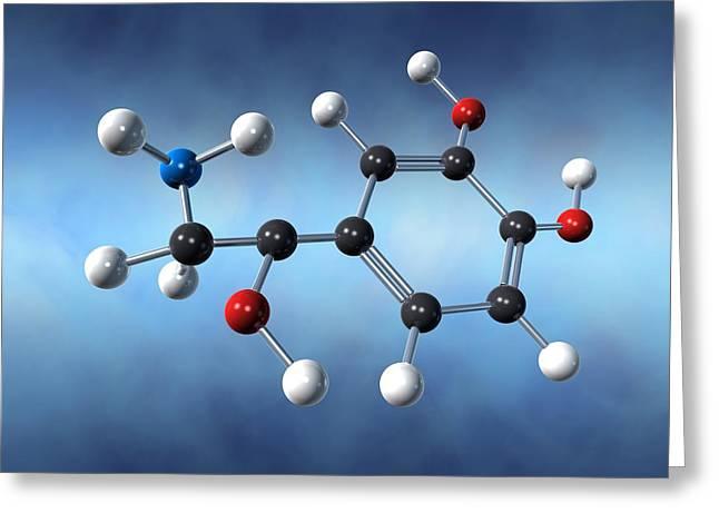 Noradrenaline Greeting Cards - Norepinephrine Neurotransmitter Molecule Greeting Card by David Mack