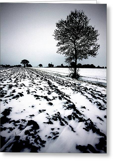 Mud Season Greeting Cards - Norfolk Winter landscape Greeting Card by Darren Burroughs
