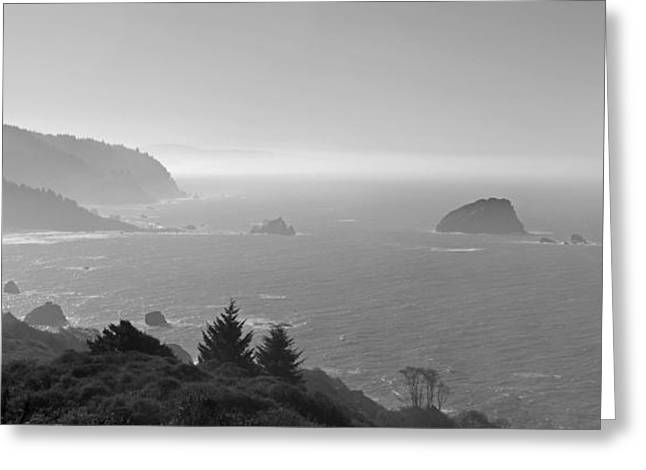 Pacific Ocean Prints Greeting Cards - North California Coast in Black and White Greeting Card by Twenty Two North Photography