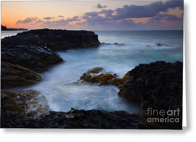 Tidepool Greeting Cards - North Shore Tides Greeting Card by Mike  Dawson