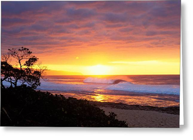 Vince Greeting Cards - North Shore Greeting Card by Vince Cavataio - Printscapes
