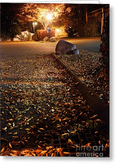 Streetlight Greeting Cards - Northamptons autumn leaves at night Greeting Card by HD Connelly