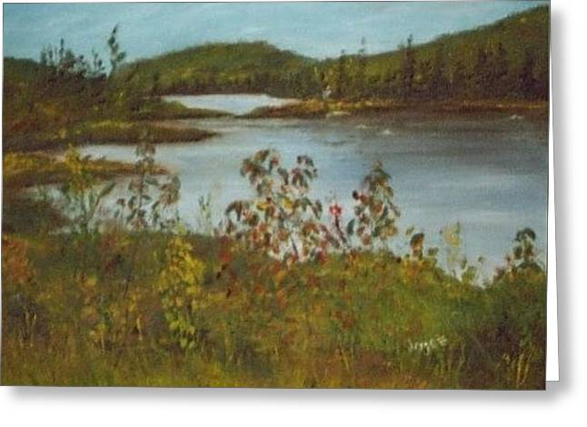 Northern Lake Greeting Card by Joyce Reid