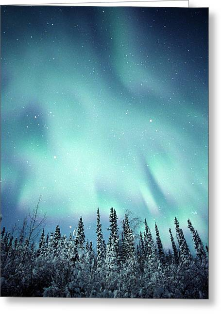 Northern Lights Over Snow Covered Greeting Card by Robert Postma