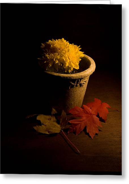 Autum Greeting Cards - Northern Still Life Greeting Card by Levin Rodriguez