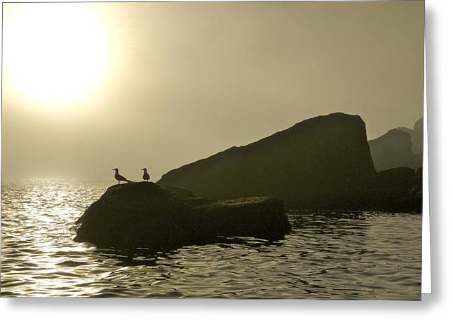 Norway, Tromso, Silhouette Of Pair Greeting Card by Keenpress