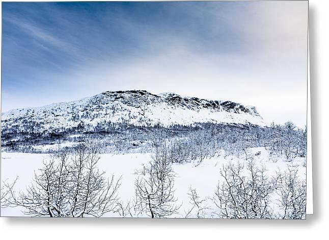 Norge Greeting Cards - Norwegian Winter Greeting Card by Hakon Soreide