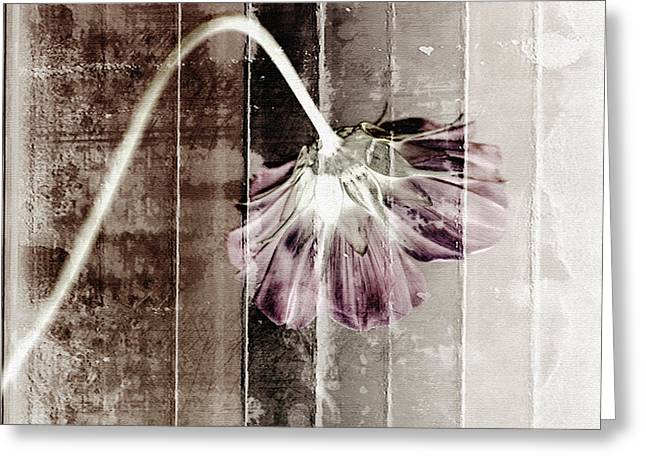 Reminiscent Greeting Cards - Nostalgia Greeting Card by Bonnie Bruno