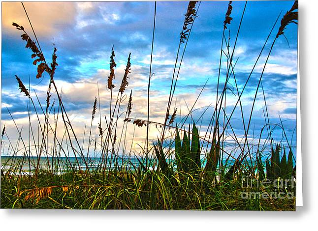 Atlantic Beaches Greeting Cards - November Day at the Beach in Florida Greeting Card by Susanne Van Hulst