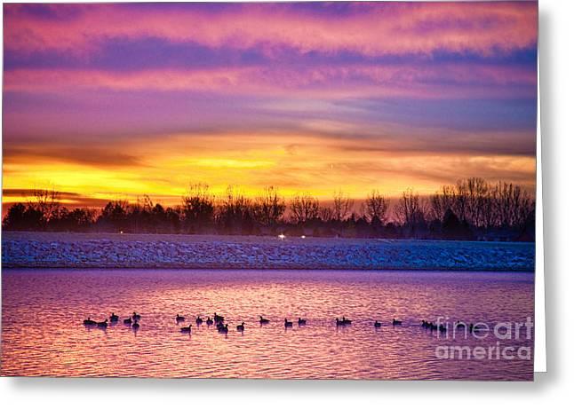 November Lagerman Reservoir Sunrise  Greeting Card by James BO  Insogna