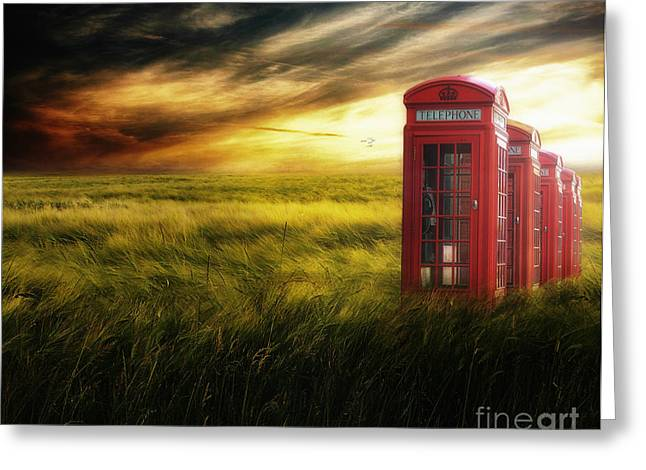 Cs5 Greeting Cards - Now Home to the Red Telephone Box Greeting Card by Lee-Anne Rafferty-Evans