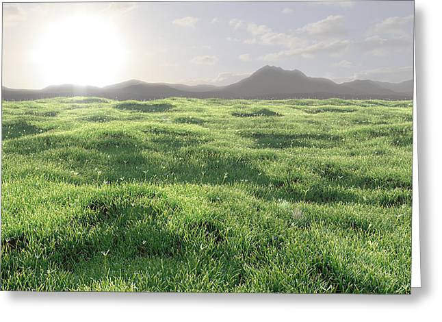 Grass Greeting Cards - Nowhere Greeting Card by Andre Deherrera