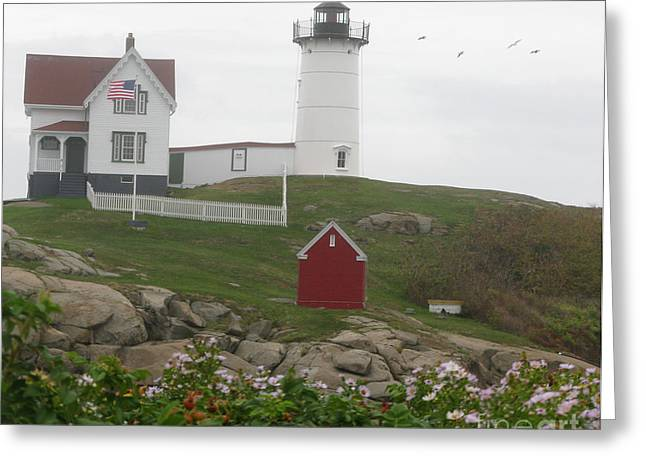 Seabirds Greeting Cards - Nubble Lighthouse at Cape Neddick Greeting Card by Patricia Januszkiewicz