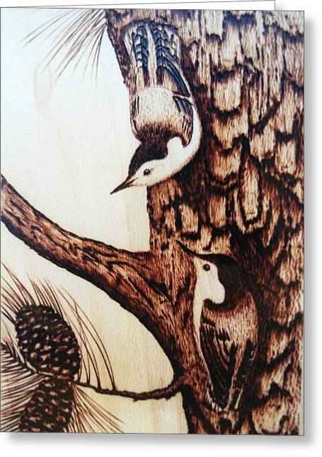 Ohio Pyrography Greeting Cards - Nuthatch Heaven Greeting Card by Susan Rice